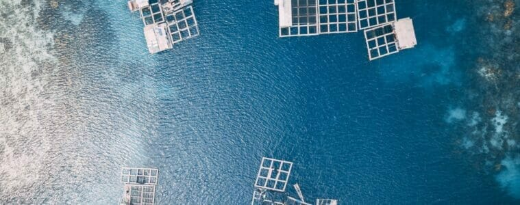 A new Integrated Multi-Trophic Aquaculture online course is now available on the Open University's OpenLearnCreate Platform